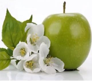 экстракт яблони